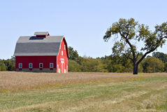 Red Barn. With a bright blue sky Stock Photo