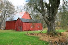 Free Red Barn Royalty Free Stock Image - 3502846