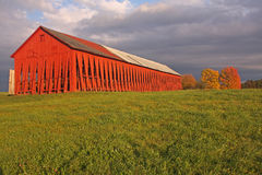 The Red Barn Royalty Free Stock Photo