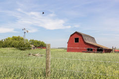 Red barn. A red barn with a barbed wire fence Stock Images