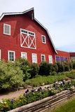 Red Barn behind flower beds Royalty Free Stock Photos