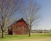 Red Barn Between Tress Stock Photography