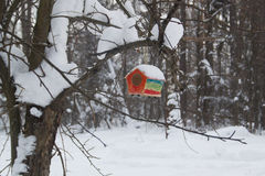 Red barn birdhouse snow covered in winter forest royalty free stock images