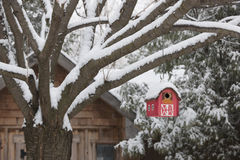 Red barn birdhouse on tree in winter Stock Image
