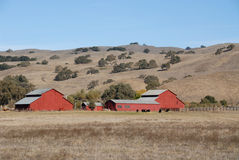 Red barn & brown hills Royalty Free Stock Photo