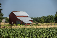 Red Barn and Corn Fields Royalty Free Stock Photography