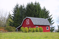 A red barn in a countryside. Stock Photos