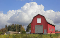 Red Barn and Cumulus Clouds. Cumulus clouds billow behind a red barn Stock Image