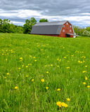 Red Barn on a farm. A classic red barn on a farm in New England Royalty Free Stock Photography