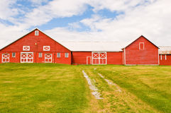 Red barn and farmyard Royalty Free Stock Photos