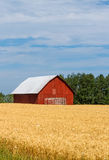 Red Barn in Field Stock Photos