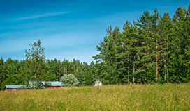 Red barn in field, Finland Stock Image