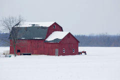 Red Barn. Framed by the snow-covered fields of Western New York stock images