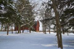 Red Barn. Framed by the snow-covered trees and fields of Western New York Stock Image