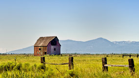 Red Barn, Golden Green Fields, Oregon. An old red rustic wooden barn, with aging slats, sits alone on yellow green fields on a farm in central Oregon, north of Stock Photos