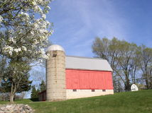 Red barn and grain silo Stock Images