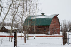 Red barn with a green tin roof. Weathered red barn with a green tin roof in winter Royalty Free Stock Images