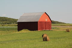 Red barn in hay field. Nice red barn with metal roof. Barn has a round bales of hay by it Stock Photo