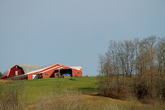 Red barn on a hill. With foreground of sloping pasture and stand grove of tree Royalty Free Stock Photography
