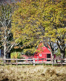 Red barn with horse Royalty Free Stock Image