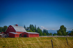 Red barn with Mount Rainier Stock Image