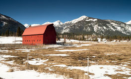 Red Barn Mountain Winter Wallowa Whitman Forest Royalty Free Stock Images