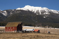 Red Barn Outbuilding Mountain Ranch Homestead Western United Sta. A red barn in early morning on the ranch against high mountain landscape Royalty Free Stock Photo