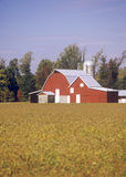 Red barn and outbuildings Royalty Free Stock Photo