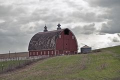 Red Barn In The Palouse Royalty Free Stock Image