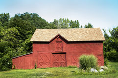 Red Barn and Pampas Grass. Pampas grass accents a beautiful red barn in Guilderland, NY Stock Photography