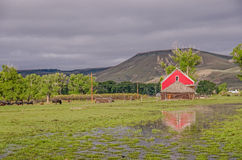 Red Barn Reflection Royalty Free Stock Photos