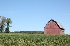Red Barn on Right. Presentation Background Stock Photography