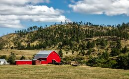 Red barn in rural field Royalty Free Stock Image