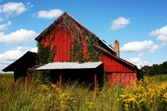 Red Barn in Saddletree Stock Photos