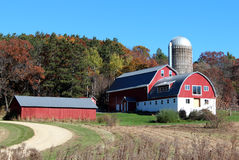 Red barn and shed. A well maintained barn on a Wisconsin dairy farm in Autumn Royalty Free Stock Images