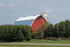 A Red Barn and Silo Against Blue Sky Royalty Free Stock Photo