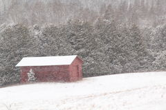 Red barn in snow blizzard. Set against woods everything is covered in fresh snow Royalty Free Stock Photography