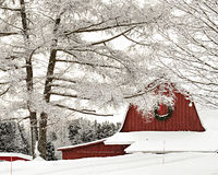 Red Barn with snow covered trees in winter Stock Photos