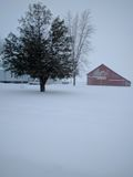 Red barn in snow with tree Royalty Free Stock Photo