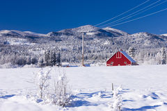 Red barn in snowy field. Royalty Free Stock Image
