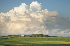 Red Barn and Soybean Fields Below Dramatic Cloudscape Royalty Free Stock Photo