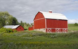 Red barn in summer field. Red and white barn against green field and skky of mixed clouds Stock Image