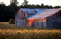 Red Barn at Sunset Royalty Free Stock Photography