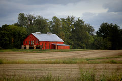 Red barn with tobacco Stock Photography