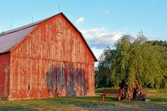 Red barn with tree shadow Stock Photos