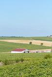 Red barn on vineyard Royalty Free Stock Images