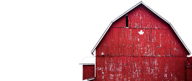 Red Barn on white sky backdrop. Flaking red painted barn on a farm with white backdrop on the sky Royalty Free Stock Photography