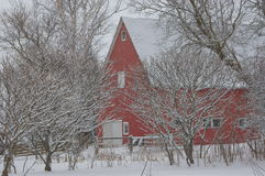 Red Barn in Winter 1. Red barn in a snowy winter landscape Stock Photos