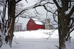 Red Barn in Winter. A red barn framed by trees that are covered with snow.  There is a silo next to the barn and lots of snow on the ground.  There is a barbed Stock Images