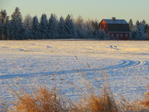 Red barn in winter. Classic rural red barn image, frost on trees, snow on ground Royalty Free Stock Photography